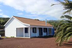 Holiday home 1714428 for 6 persons in Ribeirinha