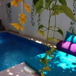 Holiday home 1720896 for 6 persons in Panadrua-Wattalpola