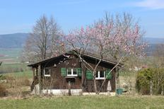Holiday home 1723108 for 5 persons in Undervelier