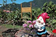 Ferielejlighed 1740030 til 2 personer i São Vicente