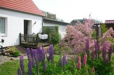 Ferienwohnung 1746733 für 3 Personen in Insel Poel (Ostseebad) OT Vorwerk