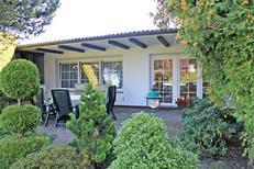 Vakantiehuis 1757049 voor 4 volwassenen + 1 kind in Eggesin