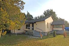 Vakantiehuis 1757050 voor 4 personen in Eggesin