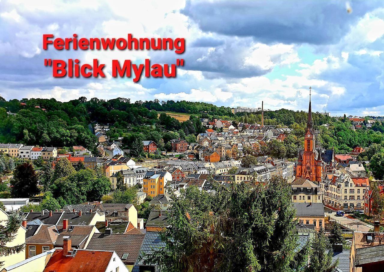 Ferienwohnung 80qm - Nähe Göltzschtalbr&   Vogtland