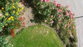 Appartement 1832495 voor 4 personen in Rabenkirchen-Faulück