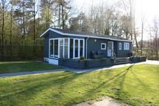 Ferienhaus 1845045 für 4 Personen in Borger
