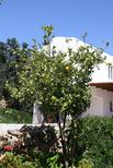 Holiday home 1847574 for 4 adults + 1 child in Agia Galini