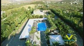 Holiday home 1897631 for 40 persons in Anavyssos