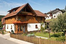 Appartement de vacances 2092563 pour 3 personnes , Bodenmais