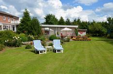 Maison de vacances 2098519 pour 4 personnes , Nordstrand