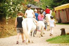 Ferienhaus 2101290 für 4 Personen in Ahneby