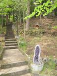 Ferienhaus 2103870 für 4 Personen in Hettenleidelheim