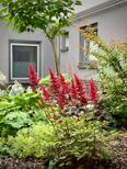 Holiday apartment 2143823 for 2 persons in Cölbe