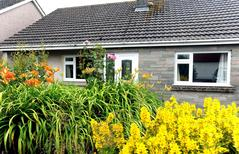 Holiday home 2153275 for 5 persons in Saundersfoot