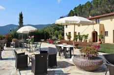 Studio 2169622 for 2 persons in Cintoia