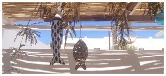 Casa de vacaciones 2179012 para 8 personas en Ios