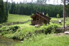 Ferienhaus 223953 für 9 Personen in Zederhaus