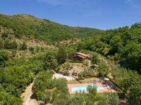 Holiday home 288051 for 6 persons in Castiglion Fiorentino