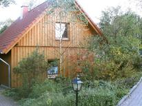 Holiday home 317213 for 4 persons in Bellersen