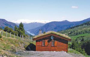 Gemütliches Ferienhaus : Region Sognefjord für 4 Personen