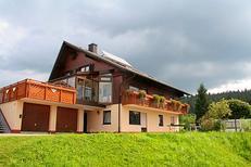 Studio 359033 for 4 persons in Furtwangen im Schwarzwald