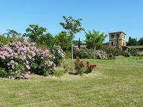 Ferienhaus 37466 für 8 Personen in Limoux