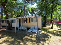 Rekreační dům 384705 pro 4 osoby v Belvedere