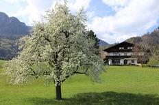 Ferienwohnung 420090 für 5 Personen in Kramsach