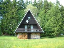 Ferienhaus 421839 für 7 Personen in Strazne