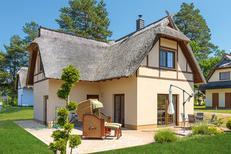 Ferienhaus 432336 für 5 Personen in Zirchow