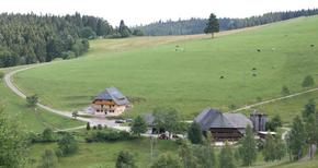 Etværelseslejlighed 494211 til 3 personer i Schonach im Schwarzwald