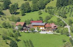 Studio 601059 für 5 Personen in Haslach im Kinzigtal