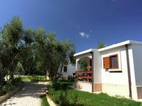 Vakantiehuis 601187 voor 5 personen in Mattinata