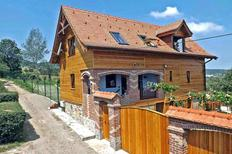 Vakantiehuis 620342 voor 8 personen in Vale bij Saliste