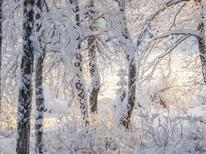 Holiday home 621743 for 8 persons in Sodankylä