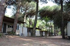 Mobile home 632707 for 4 persons in Lido di Spina