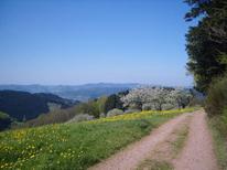 Studio 638301 voor 2 personen in Oberharmersbach