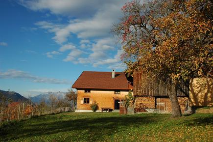 Gemütliches Ferienhaus : Region Vorarlberg für 9 Personen
