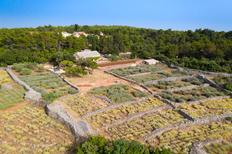 Holiday home 747015 for 7 persons in Humac auf Hvar