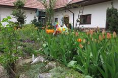 Holiday apartment 765306 for 4 persons in Smrzice