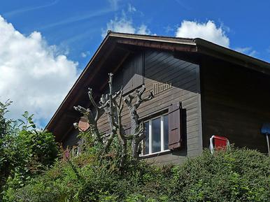 Gemütliches Ferienhaus : Region Wengen für 6 Personen