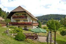 Holiday apartment 805870 for 2 persons in Enzklösterle