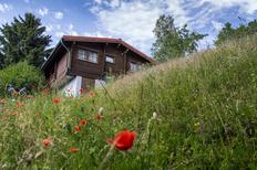 Holiday home 812345 for 4 adults + 2 children in Masserberg-Fehrenbach