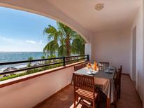 Appartement 844346 voor 6 personen in San-Nicolao