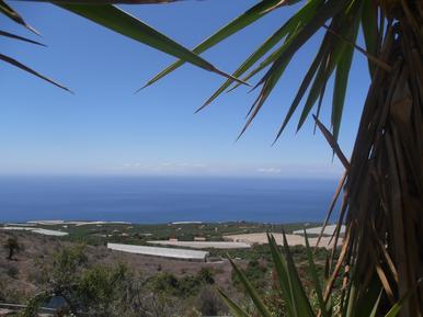 Gemütliches Ferienhaus : Region La Palma für 2 Personen