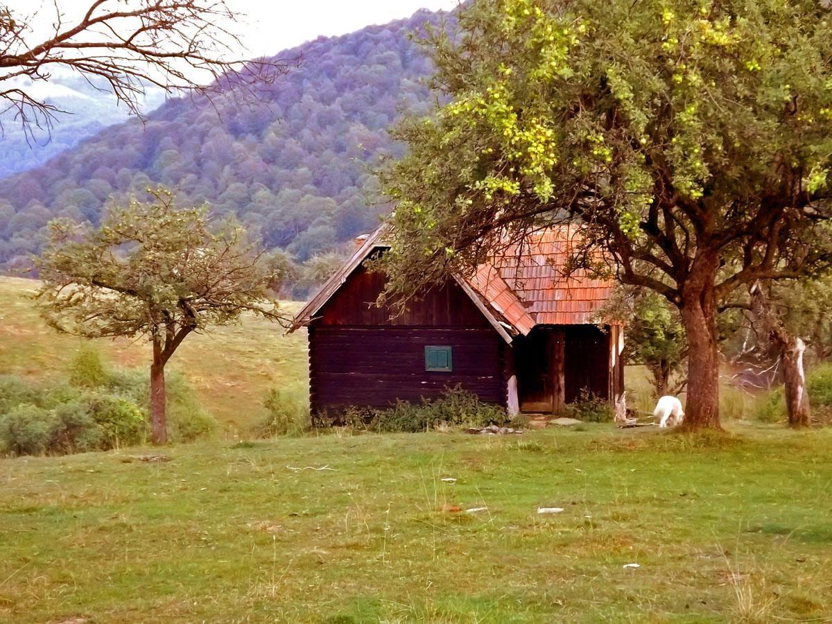 Berghütte in den Hochwiesen der Karpaten bei Sibiu in Transsilvanien ohne Elektrizität aber mit Quellwasser Milch und Käse vom Hirten nebenan