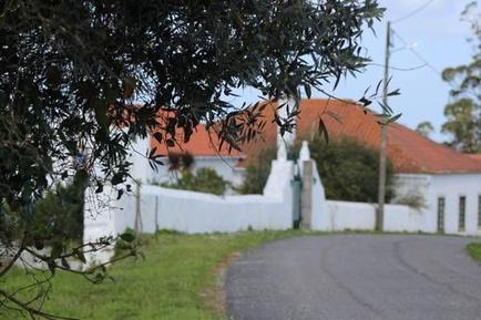 Gemütliches Ferienhaus : Region Costa de Prata für 6 Personen