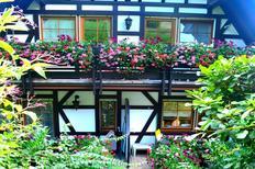 Appartement 899772 voor 2 personen in Sasbachwalden