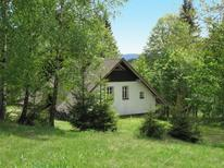 Vakantiehuis 910196 voor 7 personen in Janov nad Nisou