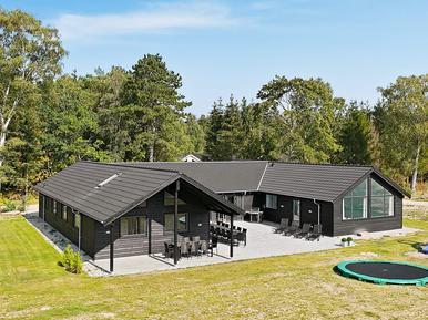 Gemütliches Ferienhaus : Region Seeland für 20 Personen